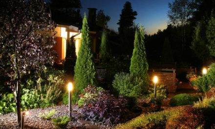 Entenda quais são os melhores modelos de LED para o seu jardim