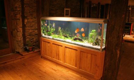 Como fazer iluminação de aquário usando lâmpada LED?